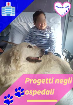 Progetti in ospedale